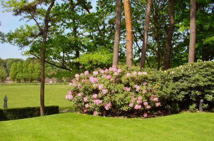 zicht-op-tuin-en-weiland.jpg