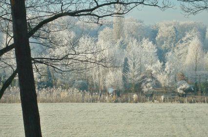 winters-uitzicht.jpg