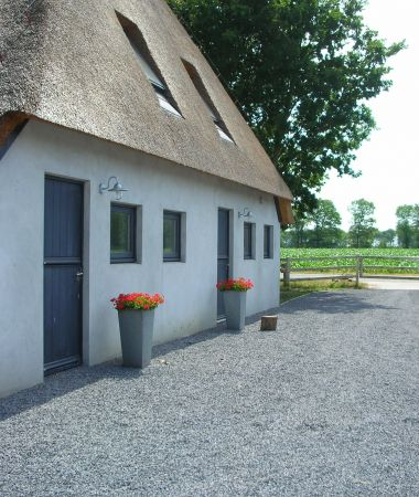 Moderne Bed & Breakfast met Paardenstal
