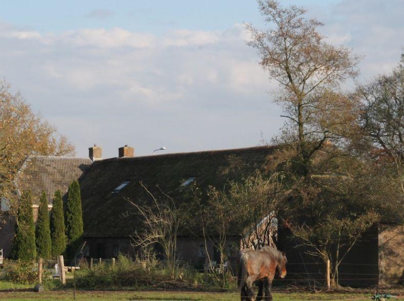 Eeuwenoude Dwarshuisboerderij