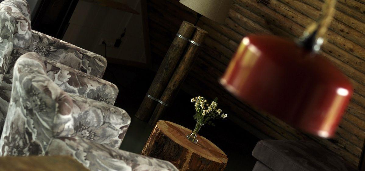 vergaderen-overnachten-bungalows-koeien-koeienstal-Heeten-Overijssel-4