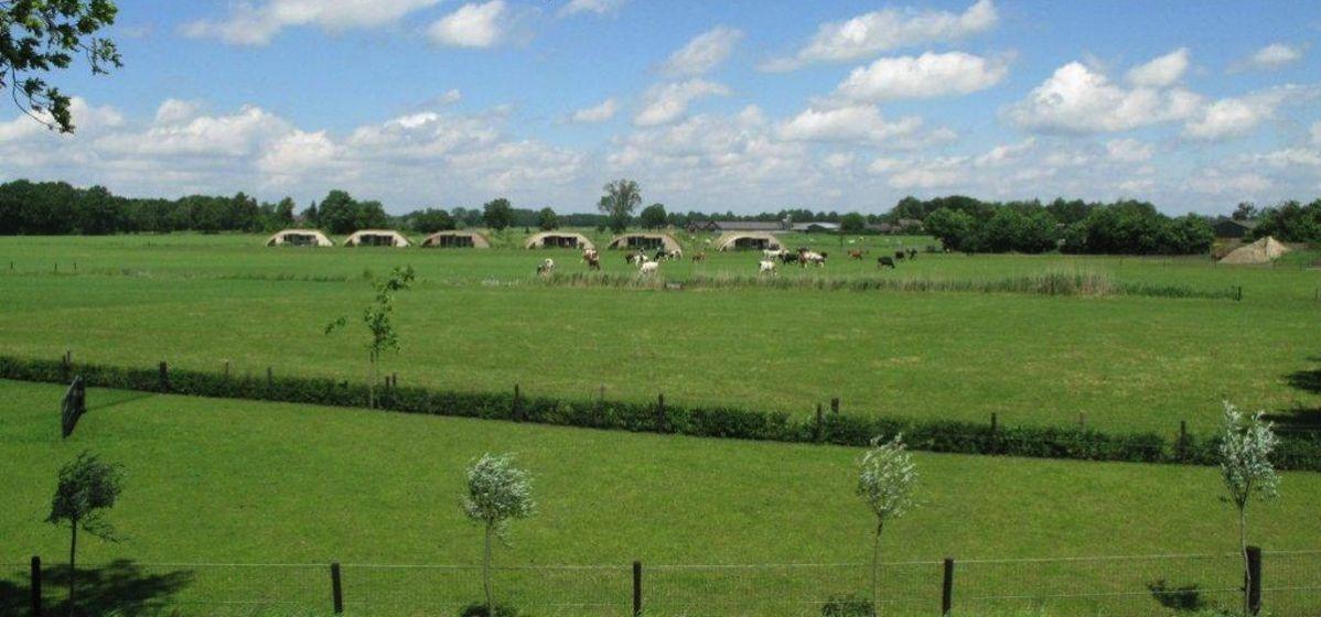 vergaderen-overnachten-bungalows-koeien-koeienstal-Heeten-Overijssel-9