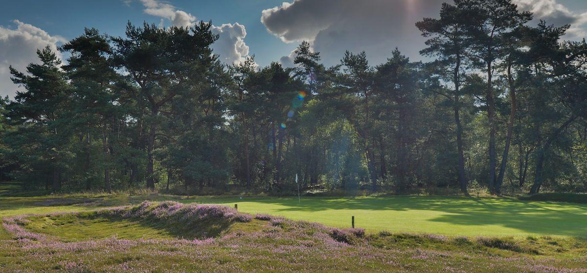 Privé-landgoed-in-de-bossen-leuvenum-gelderland-image-4.jpg