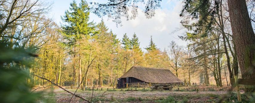 Knusse Schaapskooi op de Veluwe