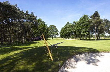 Golfbaan11.jpg